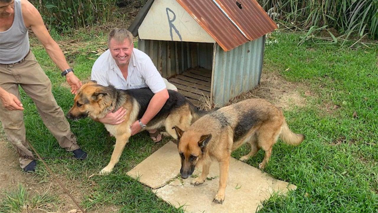 'Mud Meteorites' Rain Down on Costa Rica Town, Smashing Through Dog House With Sleeping German Shepherd Inside