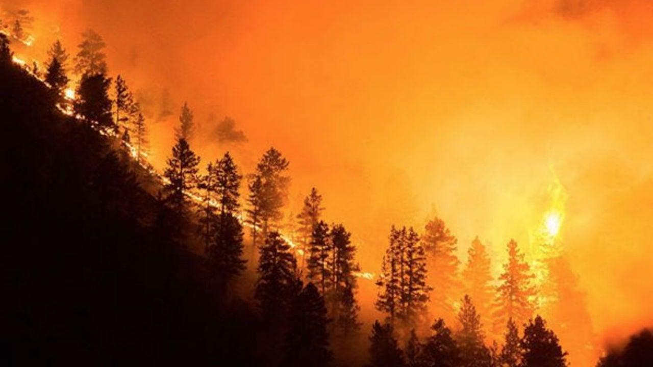 Wildfire Near Boulder, Colorado, Prompts Evacuations | The Weather ... Moderne Gaerten Trends Blumenausstellung