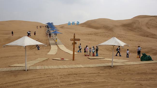 هتل نیلوفر صحرایی