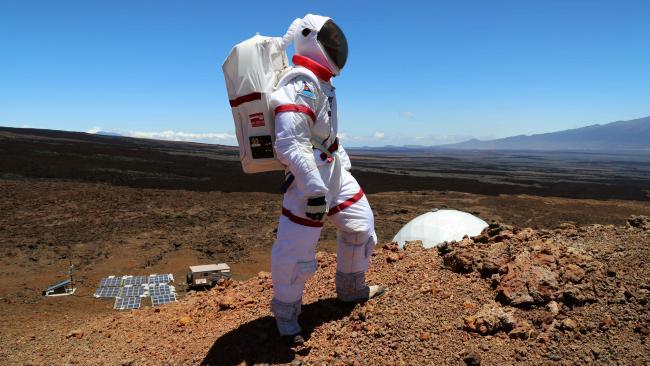 Mars Food Study
