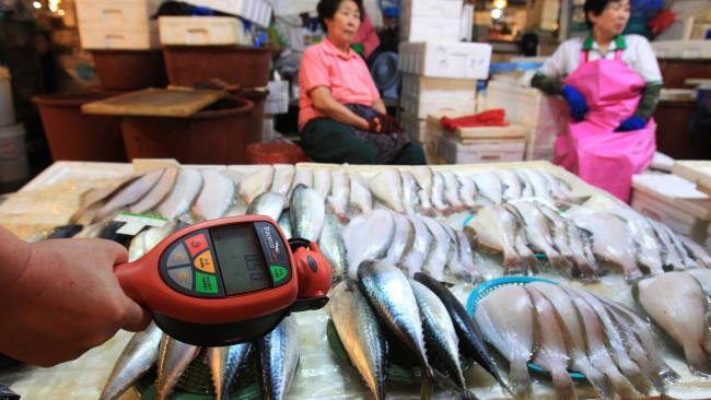 Fukushima Tainted Fish