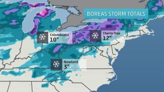 Winter Storm Boreas - Northeast