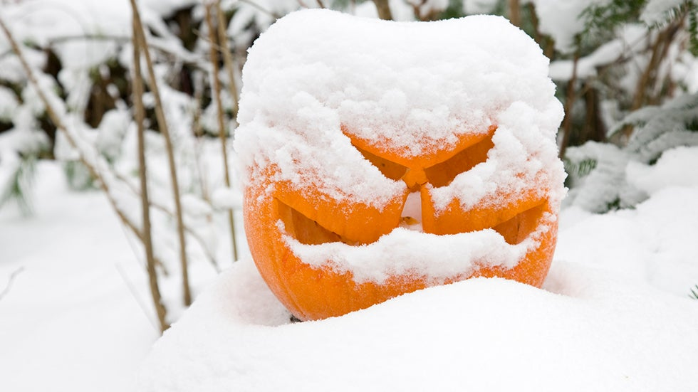 What Are the Odds of Snow on Thanksgiving in the United States?