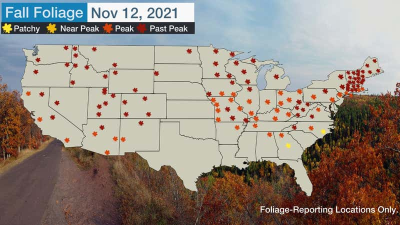 Fall is here, and that means an explosion of brilliant fall foliage. We have the latest reports of fall foliage around the U.S.