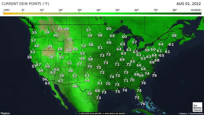 Dew points observed by National Weather Service observation stations.