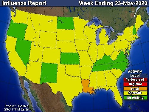 U.S. Flu Activity Map