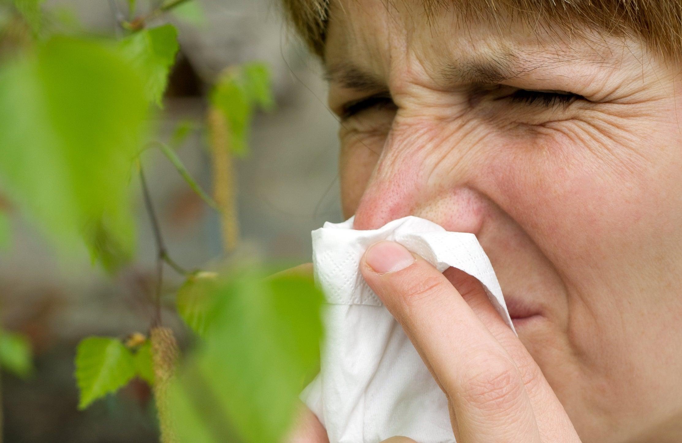 Pollenalarm! Fünf Tipps gegen Heuschnupfen