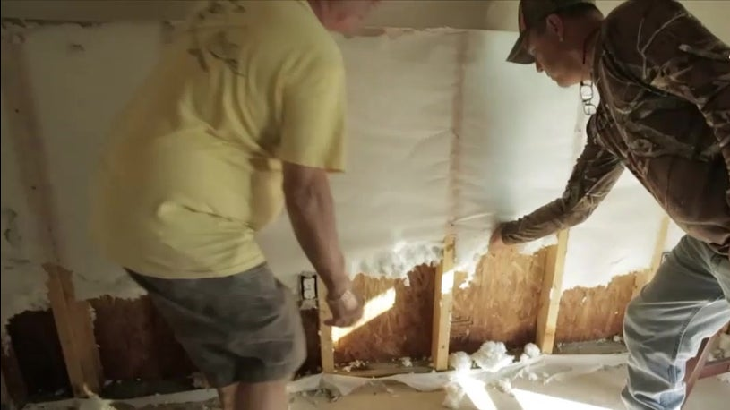 Mold Poses Hidden Menace in Louisiana