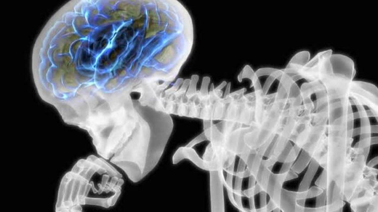 Gut gegen Alzheimer: 2 Gramm täglich hiervon