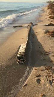 Cross Found on FL Beach