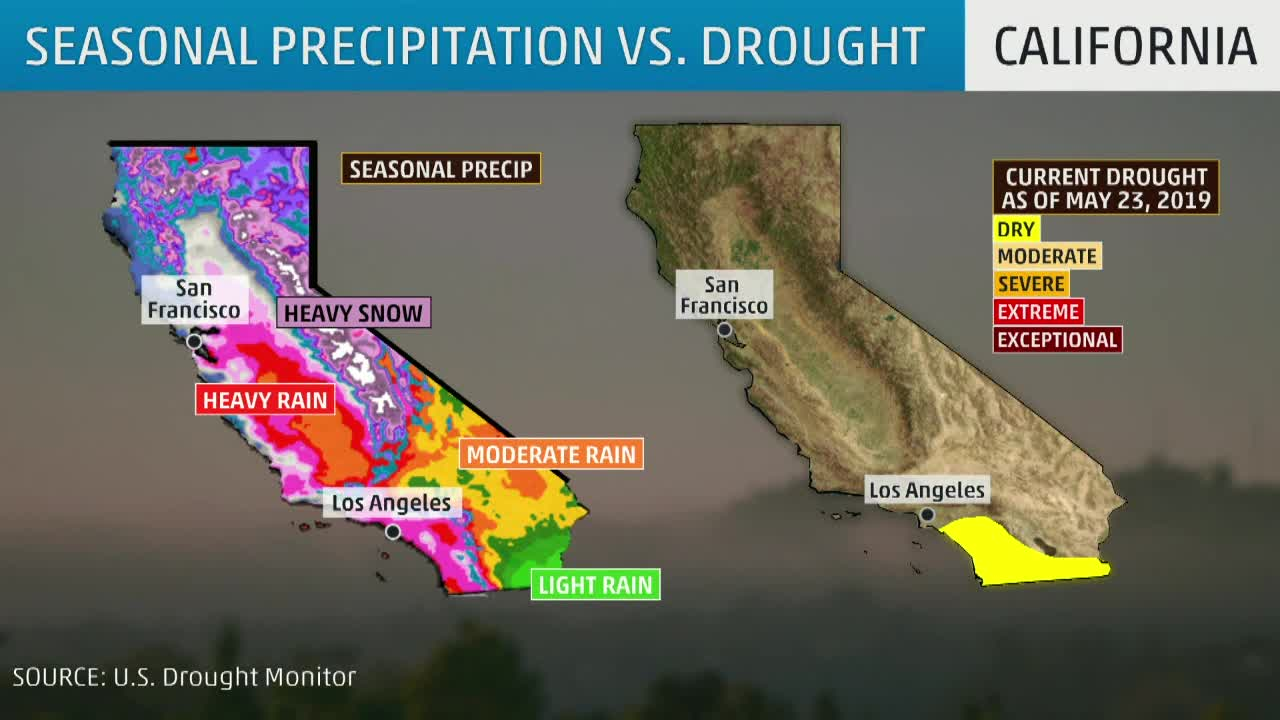 Why Too Much Rain in California Could Cause Problems in Wildfire Season