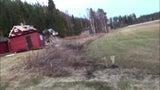 Mann will im Garten entspannen - und entdeckt Fußball spielenden Bären