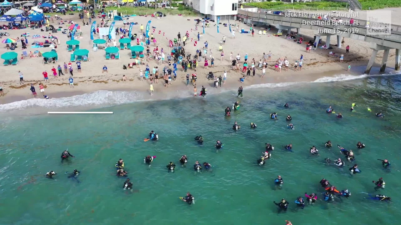 633 scuba divers participated in an underwater cleanup off Florida's coast, setting a Guinness record for the most divers in such a cleanup effort.