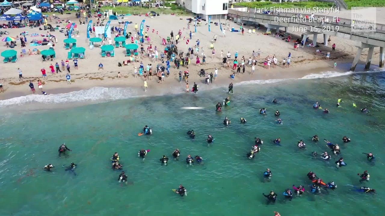 633 buceadores participaron en una limpieza subacuática en la costa de Florida, estableciendo un récord Guinness por la mayor cantidad de buzos en este esfuerzo de limpieza.