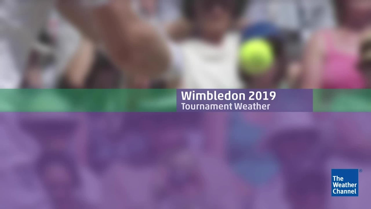Detailed for the Wimbledon Tournament 2019