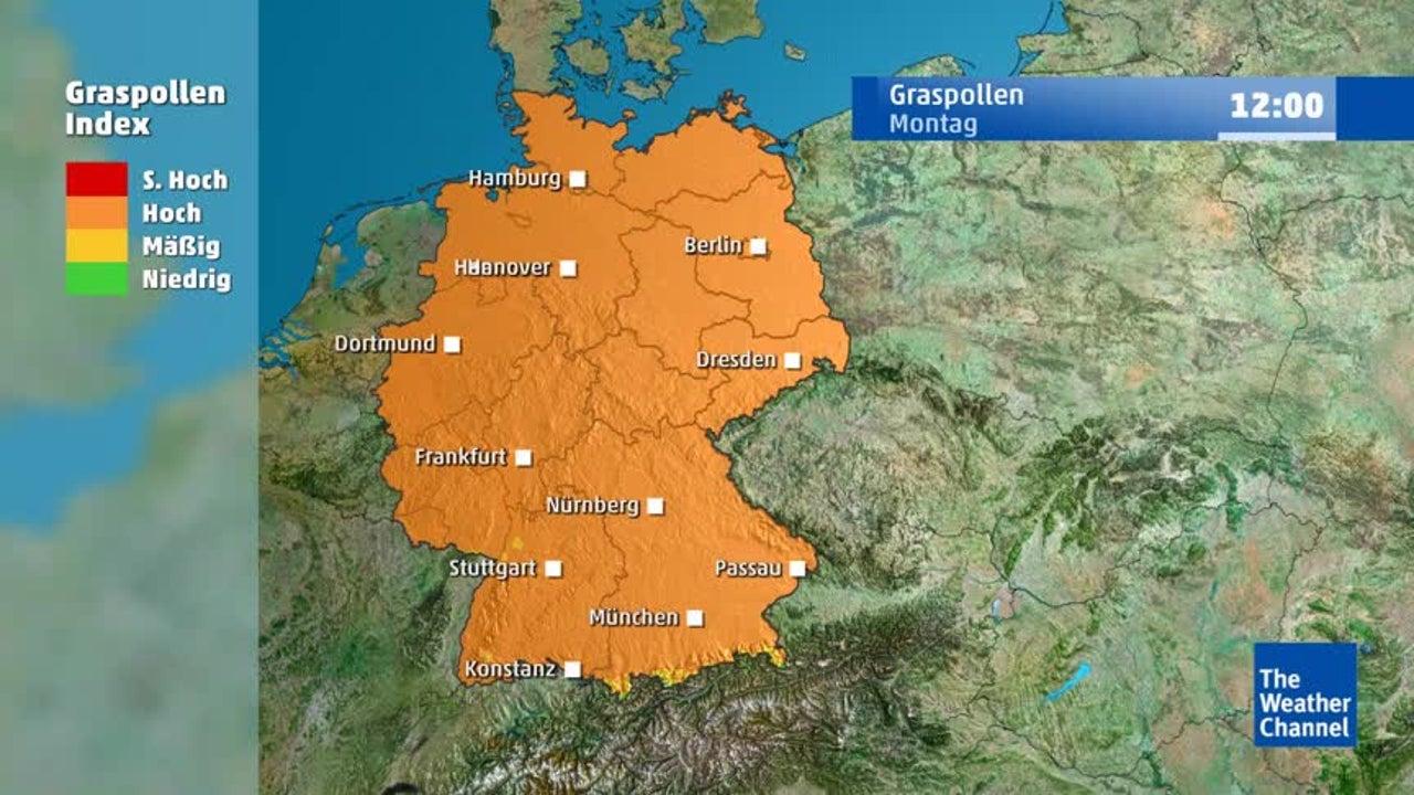 Pollenflug: In einer Region können Allergiker diese Woche kurz aufatmen