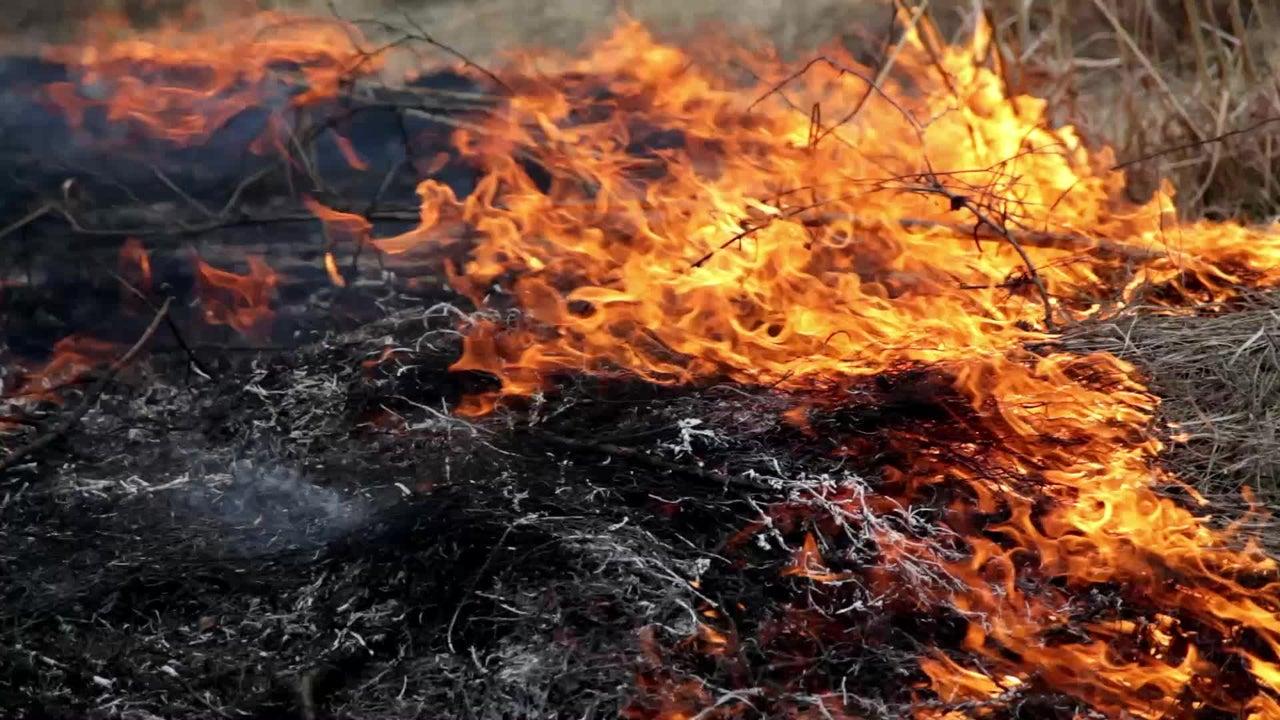 Mega-Brände in der Arktis befeuern Klimawandel