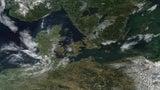 Blaualgen-Teppich könnte deutsche Küste erreichen: Wie Sie sich schützen