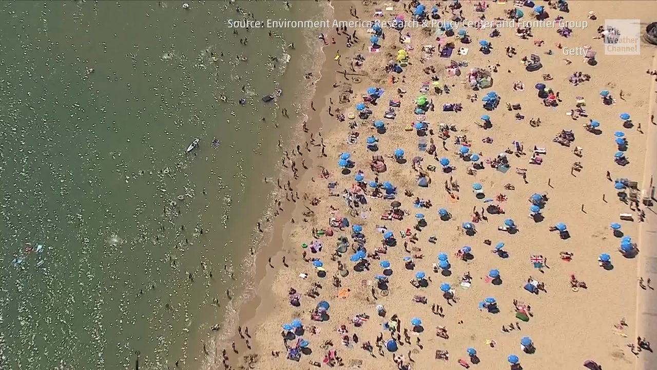Poop Could Ruin Your Beach Vacation