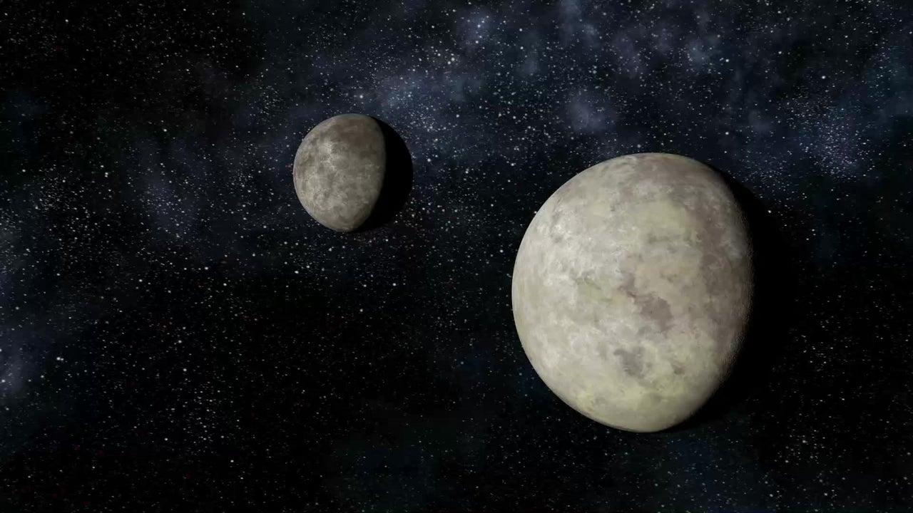 Wasserbären nach Bruchlandung auf Mond geschleudert