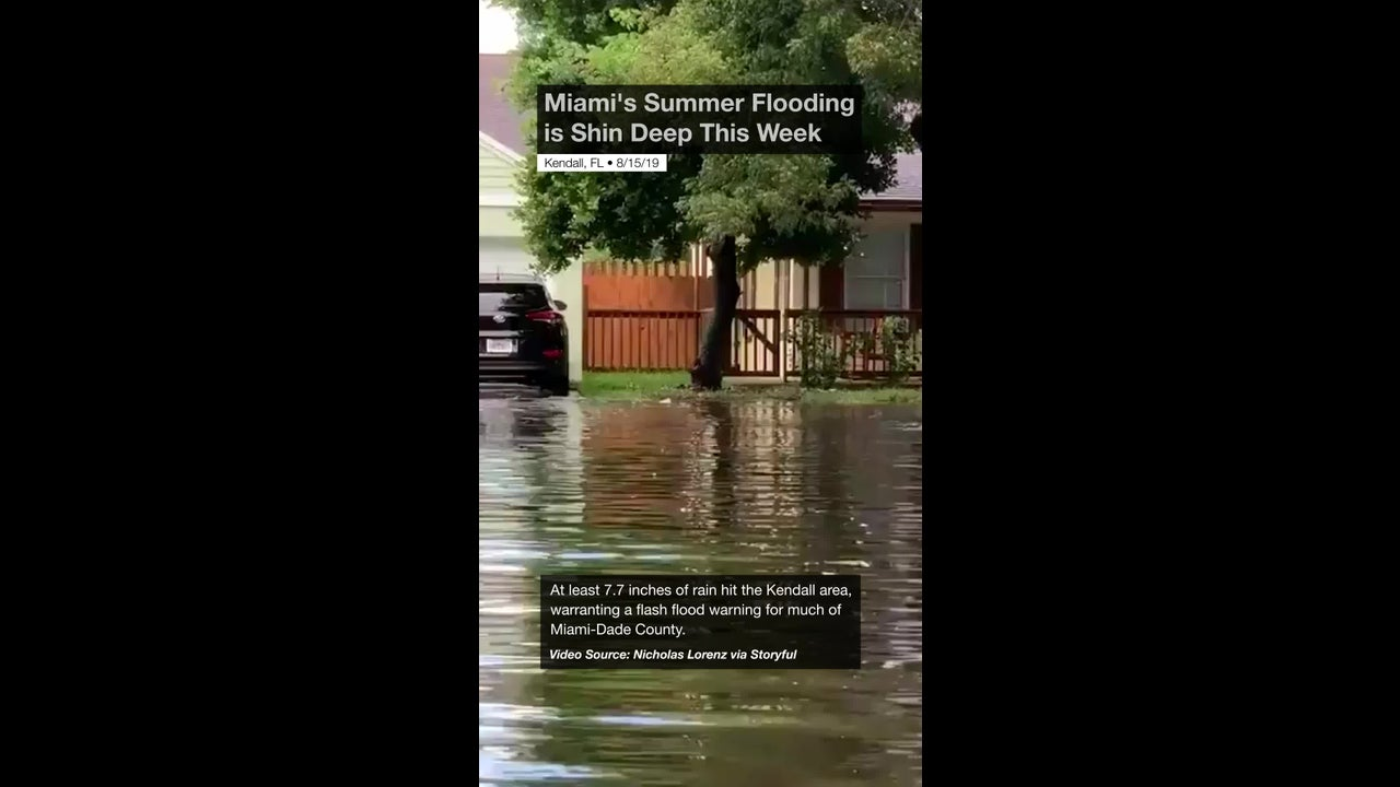Miami's Summer Flooding is Shin Deep This Week | The Weather