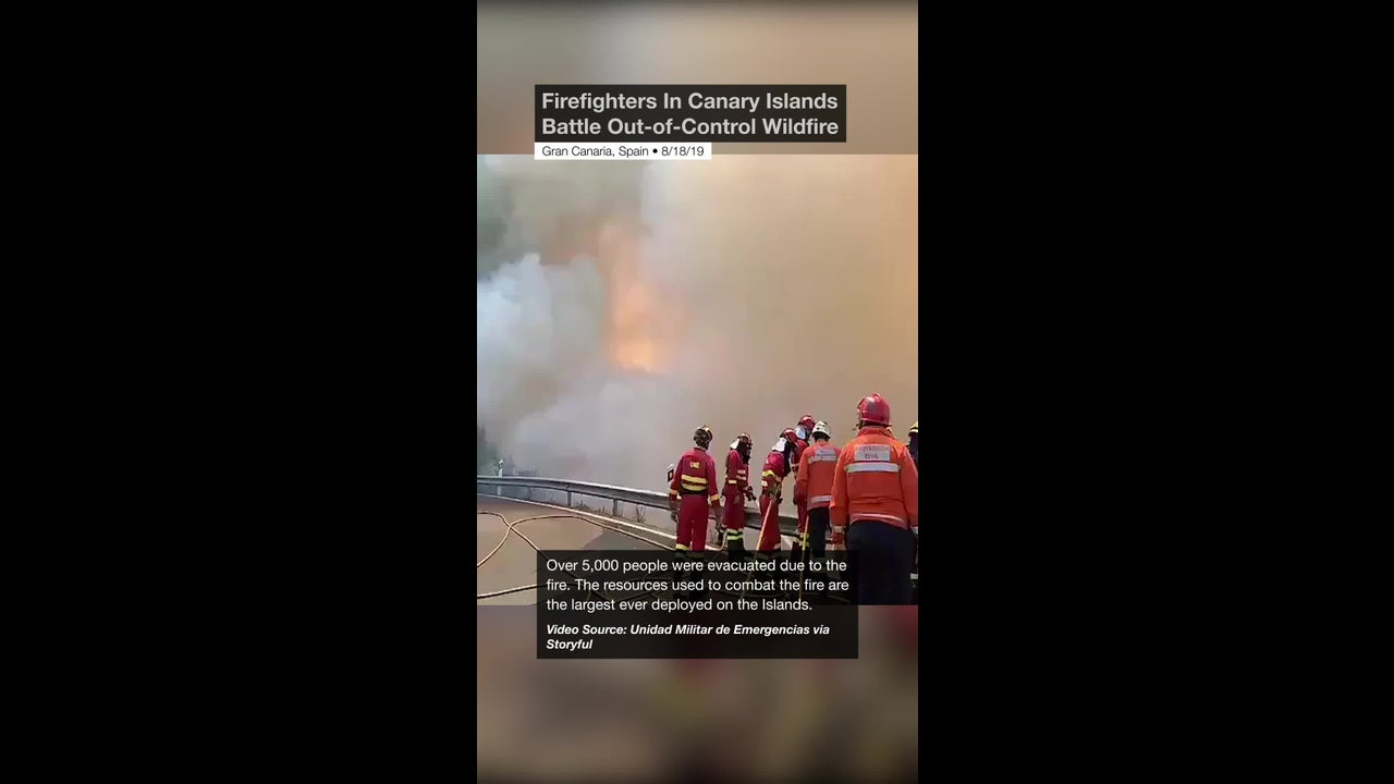 Firefighters In Canary Islands Battle Out of Control Wildfire
