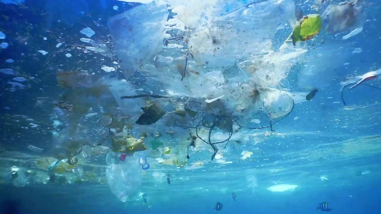 Forscher machten schockierende Entdeckungen: Sie fanden Mikroplastik an unberührten Orten, wie hohe Gebirgslandschaften. Selbst auf 3000 Metern Höhe finden sich bunte Kunststofffasern im Regenwasser.