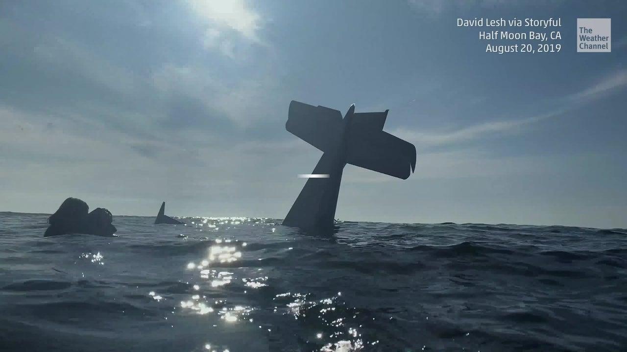 Piloto y pasajero rescatados tras accidentarse en el mar