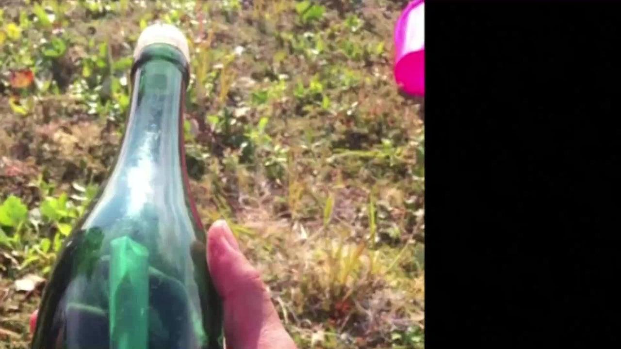 Nach 40 Jahren ist eine Flaschenpost endlich angekommen. Ein Lehrer fand die Flasche mit der Botschaft aus der Vergangenheit in Alaska. Und tatsächlich ließ sich auch der Verfasser ermitteln.