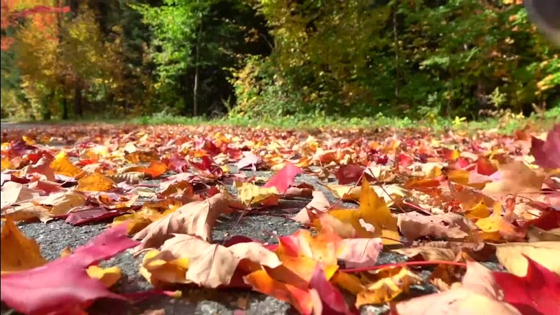 First Day of Fall Will Still Feel Like Summer for Much of the Country