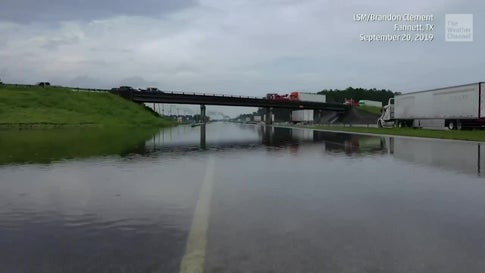Imelda Disaster: I-10 Closed, Five Dead and Gators Spotted in Floodwaters