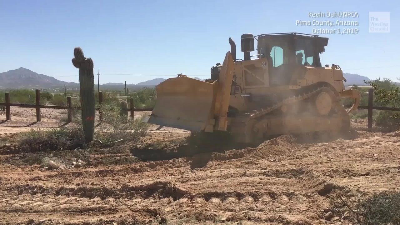 Donald Trump wills ein Wahlversprechen einlösen und eine Grenzmauer bauen. Bis 2020 sollen ein 700 Kilometer langer Zaun entstehen. Das Auftauchen der Bauarbeiter in Arizona hat einen neuen Skandal ausgelöst, als ein Video auftaucht, das zeigt, wie Bagger ein Wahrzeichen des US-Staates dem Erdboden gleichmachen.