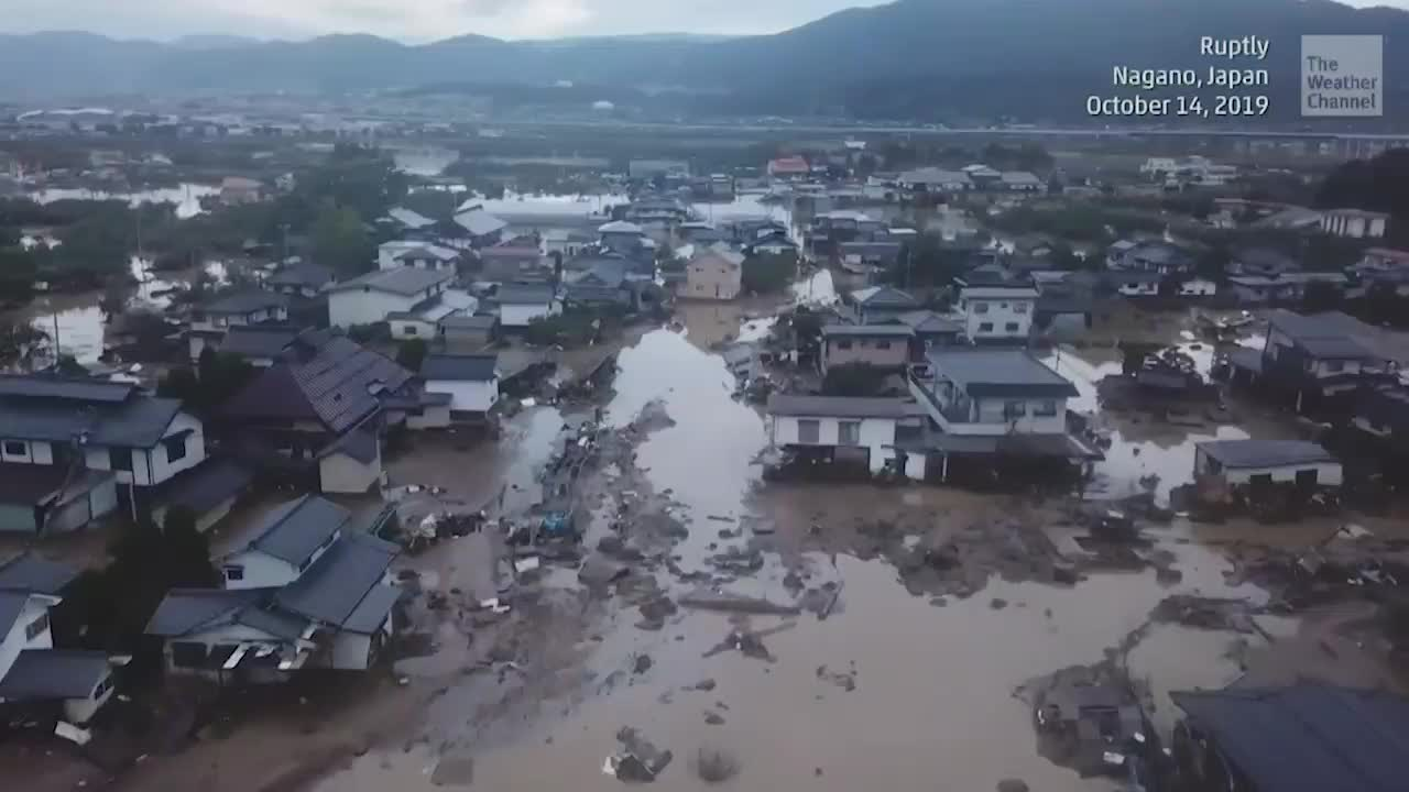 Typhoon Hagibis, the most destructive storm to hit Japan in decades, has killed more than 50 people and injured about 100. Rescue crews are searching for survivors as more than a dozen remain missing.