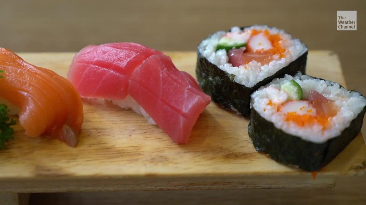 Die steigenden Meerestemperaturen setzen Nori zu: Die essbaren Meeresalgen, die für Sushi verwendet werden, verfärben sich oder verschwinden ganz.