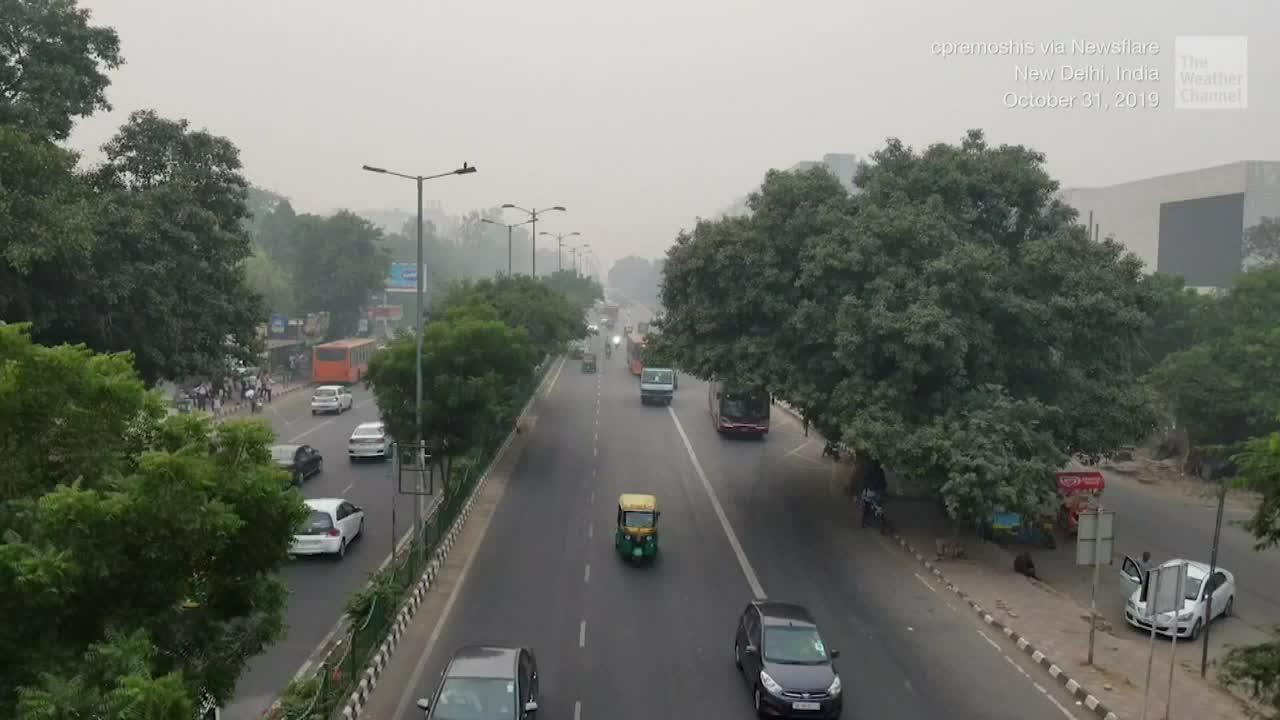 toxic smog shuts down schools in new delhi