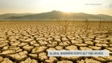 2010s Likely to Be Warmest Decade on Record