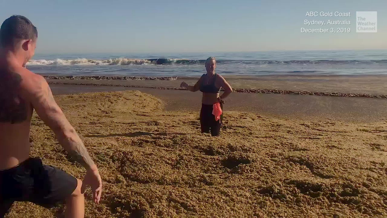 A woman jogging on the beach ends up stuck in what looks like soggy cornflakes.
