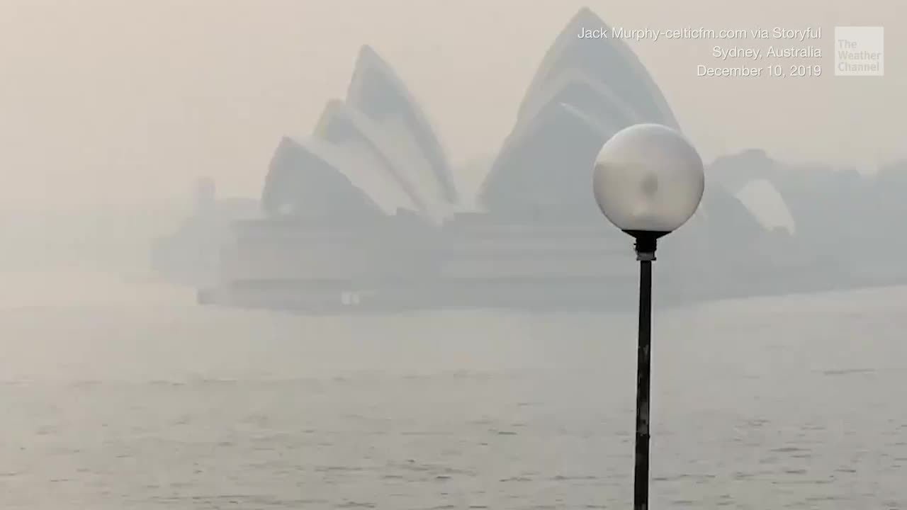 "Dense smoke from dozens of wildfires across Australia's New South Wales has blanketed Sydney, causing poor air quality 11 times the ""hazardous"" levels."