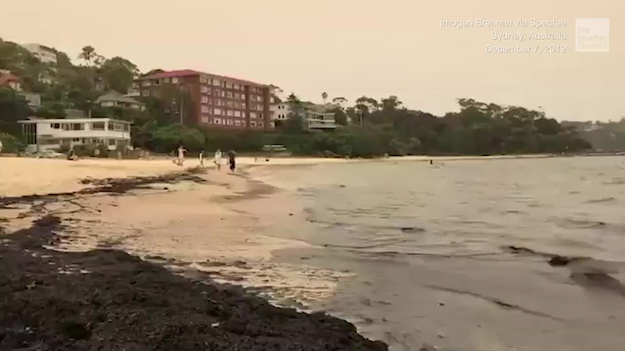 Ash from raging wildfires are turning beaches in Sydney and around New South Wales black. The fires have killed at least six people and destroyed hundreds of homes since October.