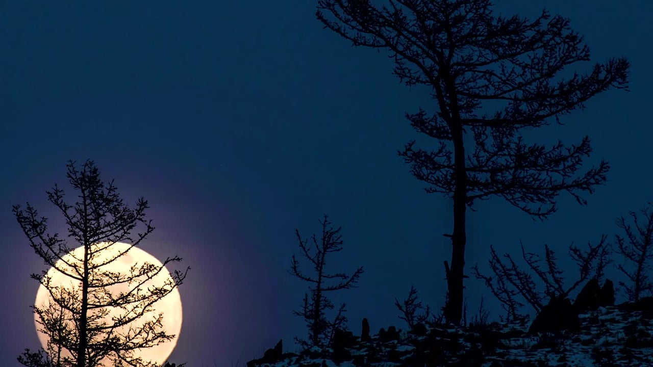 First Full Moon of 2020 Comes with a Lunar Eclipse