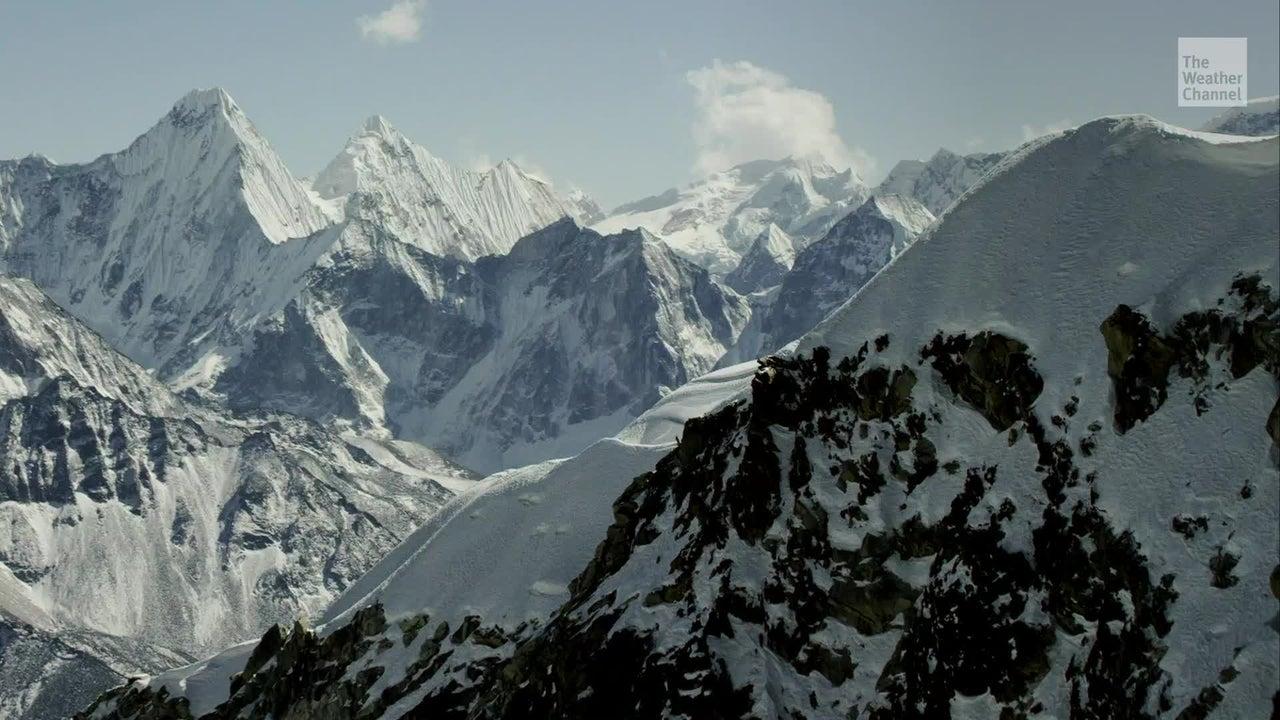 Plantas crecen en el Monte Everest
