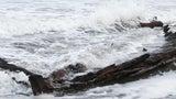 Tormenta revela el naufragio de un buque