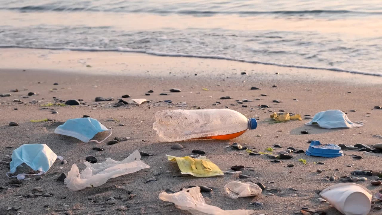 Face Masks, Other COVID-19 Waste Polluting the Ocean