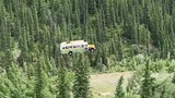 'Into the Wild' Bus Airlifted out of Alaskan Wilderness