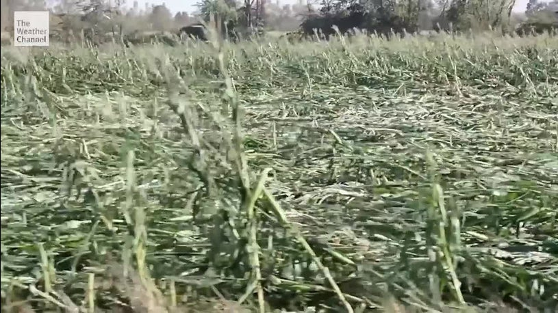 Derecho Could Cost Farmers Billions of Dollars