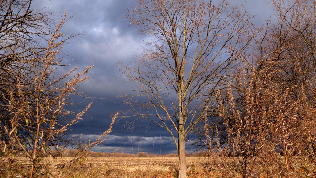 Wind kommt auf: Das ruhige Wetter verabschiedet sich