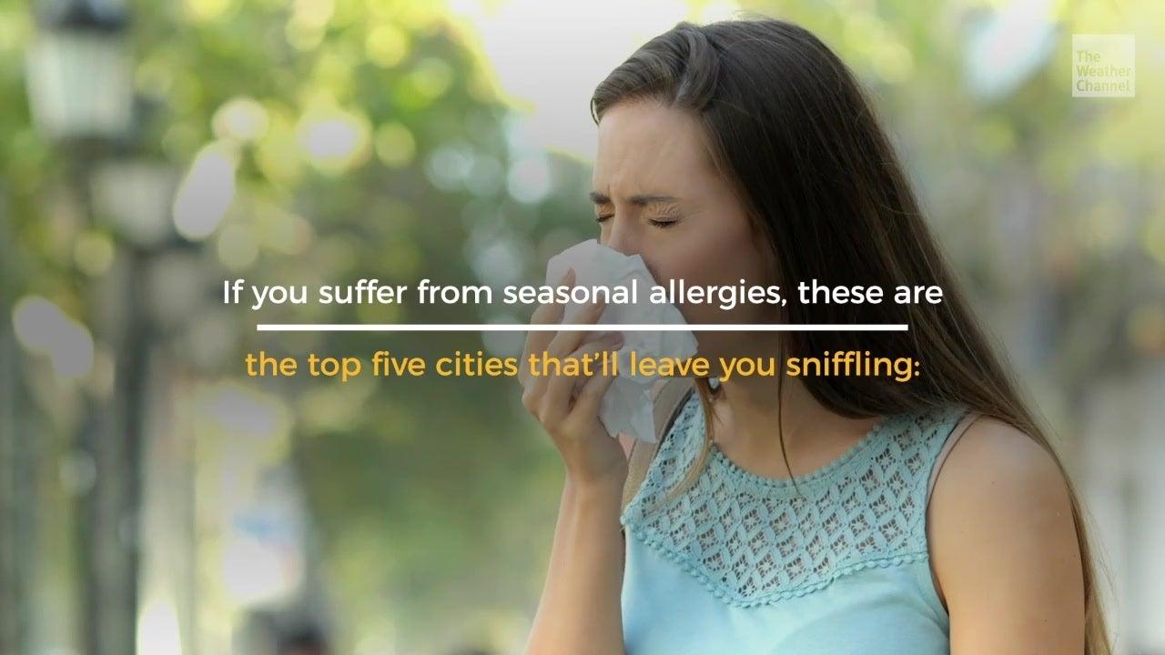 ¿Tienes alergias?