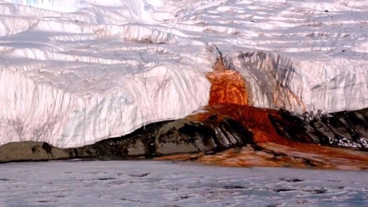 """""""Blutiger Wasserfall"""" in Antarktis - jetzt wurde sein Rätsel gelöst"""
