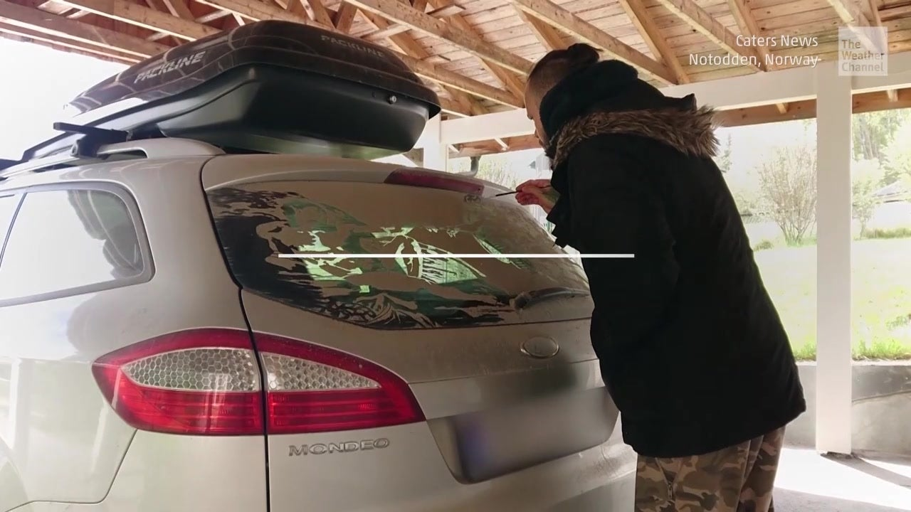 Dirty Car or Canvas?