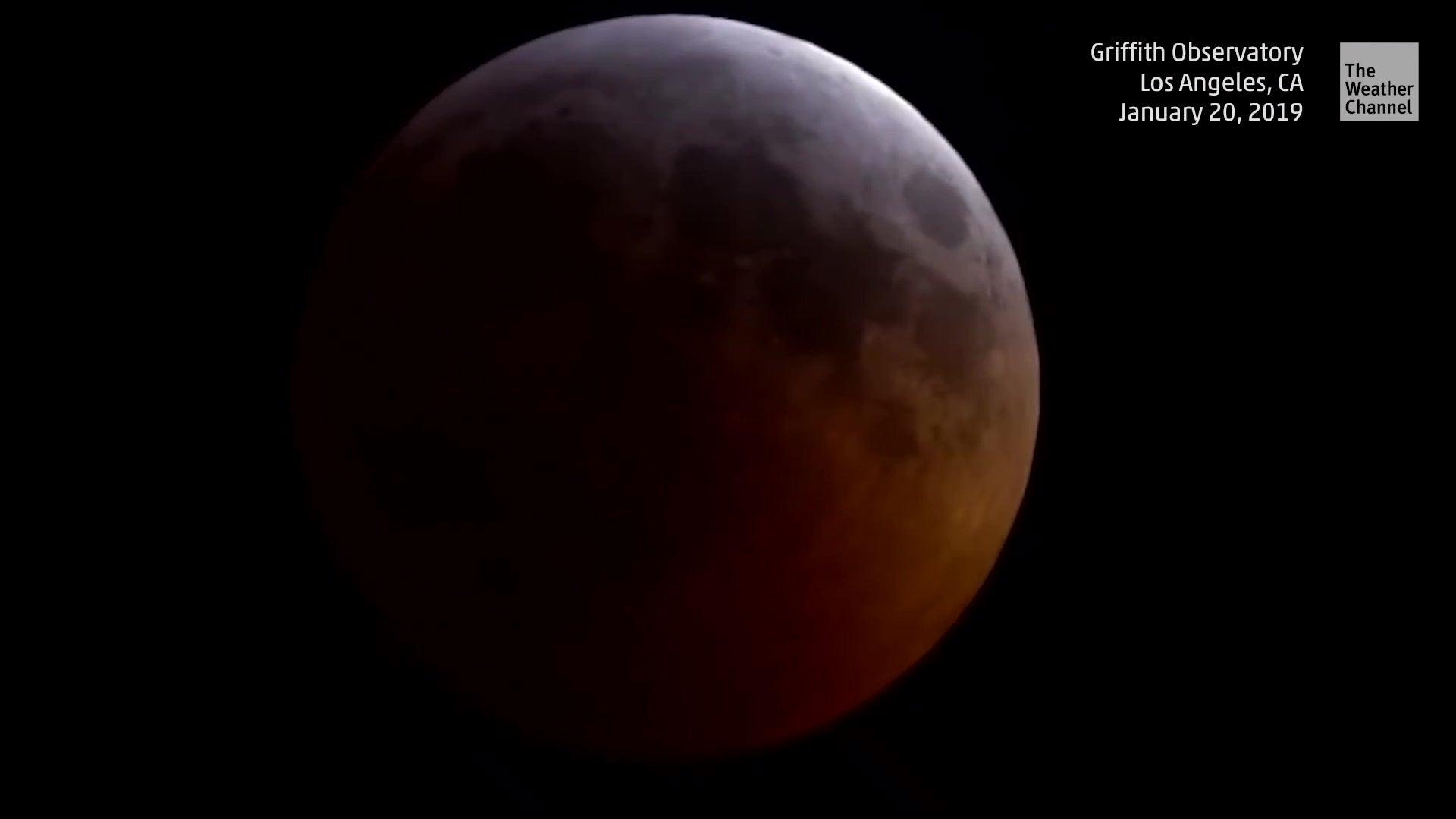 Zum Blutmond: Meteorit schlug auf Mondoberfläche ein